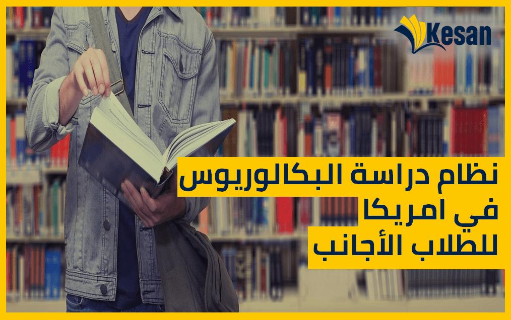 الدليل الكامل لدراسة البكالوريوس للطلاب العرب