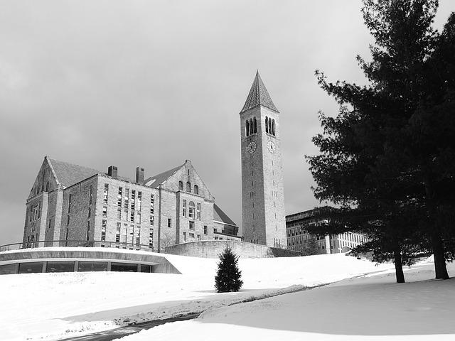 الجامعات الحكومية في الولايات المتحدة الامريكية