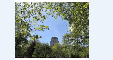 جامعة لندن – University of London