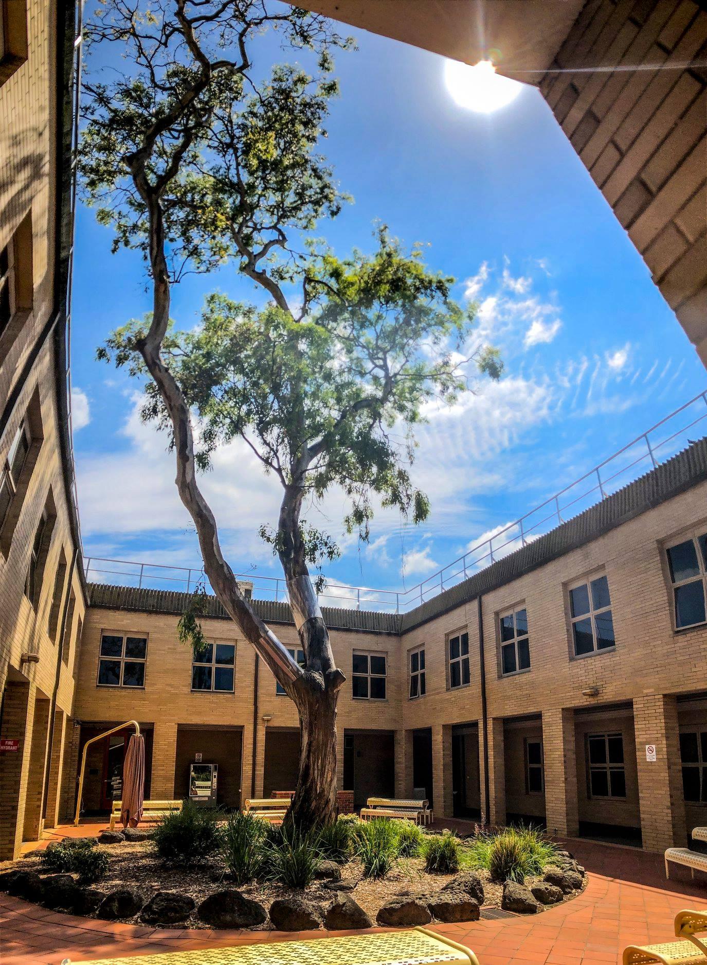 جامعة لا تروب – University of La Trobe